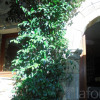 Maison / villa maison 4 pièces Gabian - Photo 16