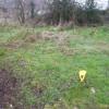 Terrain terrain à bâtir 504 m² Betz - Photo 2