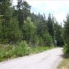 Terrain terrain à bâtir Colmars - Photo 1