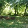 Terrain terrain à bâtir St Medard de Guizieres - Photo 1