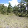 Terrain terrain à bâtir St Andre les Alpes - Photo 3
