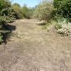 Terrain parcelle de 600 m² constructible Fouras - Photo 3