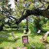 Terrain terrain montelimar est 750 m² Montelimar - Photo 5