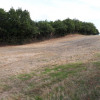 Terrain terrain roynac 2287 m² Roynac - Photo 2