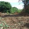 Terrain terrain de 750 m² à bdn ste clotilde Bois de Nefles - Photo 2