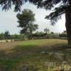 Terrain terrain 916 m² Pezenas - Photo 1