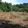Terrain terrain de 750 m² à bdn ste clotilde Bois de Nefles - Photo 3