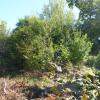 Terrain terrain 700 m² Betz - Photo 1