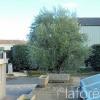 Maison / villa maison 3 pièces Montblanc - Photo 16