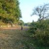 Terrain terrain 3565 m² Mareuil sur Ourcq - Photo 4