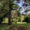 Maison / villa maison proche montélimar en lisière de bois Savasse - Photo 13