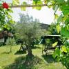 Maison / villa maison 9 pièces Pezenas - Photo 17