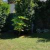Maison / villa maison 3 pièces Ermont - Photo 9