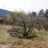 Site site  Collonges sous Saleve - Photo 1