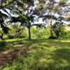 Terrain terrain montelimar est 750 m² Montelimar - Photo 3