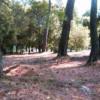 Terrain magnifique parcelle de terrain constructible de 6843 m² Biot - Photo 3
