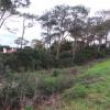 Terrain terrain Anglet - Photo 2