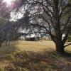 Maison / villa très belle propriété ! Dourdan - Photo 8