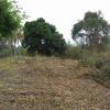 Terrain terrain 1180 m² La Saline - Photo 3