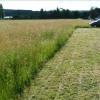 Terrain terrain a bâtir Pinterville - Photo 3