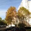 Appartement bagneux - appartement 2 pièces Bagneux - Photo 1
