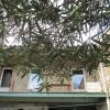 Maison / villa maison en pierres La Voulte sur Rhone - Photo 1