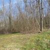 Terrain terrain à bâtir Les Echelles - Photo 1