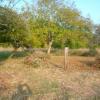 Terrain terrain 3565 m² Mareuil sur Ourcq - Photo 6