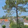 Maison / villa propriété fin 19ème - 15 pièces - 297 m² Royan - Photo 16