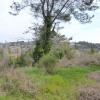 Terrain terrain 1265 m² Mouans Sartoux - Photo 1