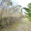 Terrain terrain 1265 m² Mouans Sartoux - Photo 2