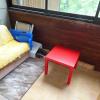 Appartement studio et balcon ferme Allos - Photo 3