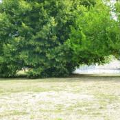 Vente de prestige maison / villa Soissons 290000€ - Photo 3