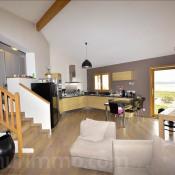 Sale house / villa Moissieu sur dolon 285000€ - Picture 2