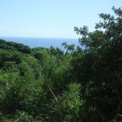 Vente terrain Bois De Nefles