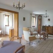 Vente maison / villa Peillonnex