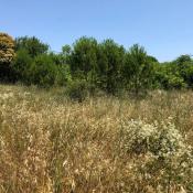 Vente terrain Adissan