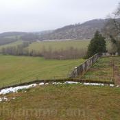 Sale house / villa Cour et buis 145000€ - Picture 3