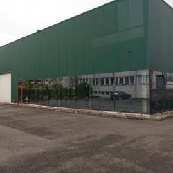 Hall activité fonctionnel et lumineux Strasbourg-Meinau