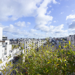 Sale Apartment Paris Square Carpeaux - 38m2