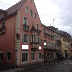 Immeuble à rénover Saverne - Centre