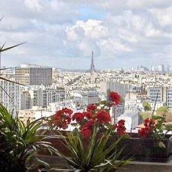 Sale Apartment Paris Chevaleret - 100m2