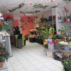 Fonds de commerce Fleuriste