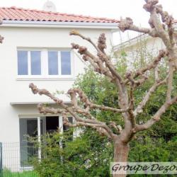 Appartement T3 duplex avec jardin privatif