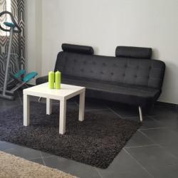 Appartement meublé 3 pièce (s) 42 m²