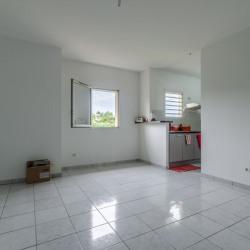 Appartement Saint Pierre 2 pièce (s) 40.4 m²