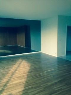 Sale apartment Caluire et cuire 300000€ - Picture 3