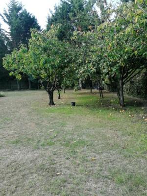 Terrain Leognan 1600 m²