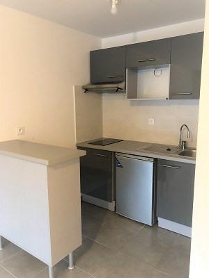 Location appartement Plaisance du touch 550€ CC - Photo 3