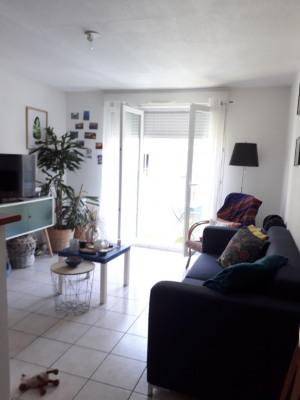 T2 limoges - 2 pièce (s) - 35,96 m²
